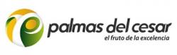 Logo Palmas del Cesar
