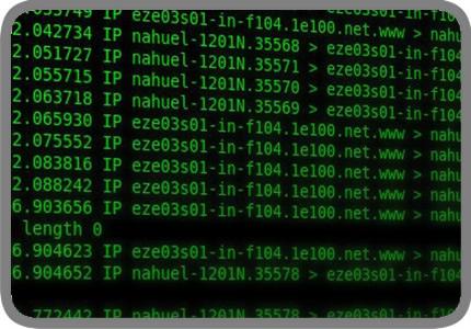 Consulta de tráfico en la red – Genesis Data